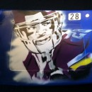 Adrian Peterson #28 Metrodome Seat-Hand Airbrush Painted
